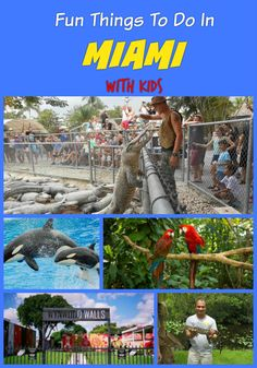 Top Fun things to do in Miami with kids on vacation - Everglades, Biscayne, Seaquarium, Jungle Island, Wynwood Walls, Zoo, Vizcaya Museum and Gardens and more activities and family attractions