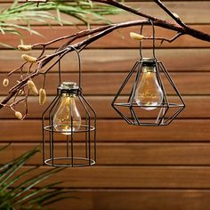If you love the minimal look, you're sure to love these geo & cone designed solar metal lanterns for just $9 each. On point  #bargain #getsavvy #garden #solarlights #savvyshopper