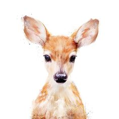 Deer/Doe Art Print by Amy Hamilton   I have the hanging on my wall, I love it so much