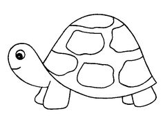 Coloriage Tortues !