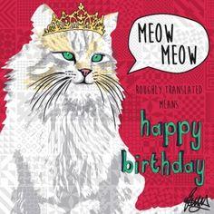 Princess Elizabeth Longhair Cat