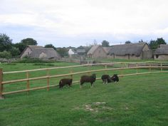 Example of Medieval village in Wales. Cosmeston Reconstructed Medieval Village. This reconstructed medieval village is at Cosmeston Lakes, south of Penarth, and even the sheep are carefully chosen to fit in. Picture taken 16 August 2006 via Wikimedia Commons