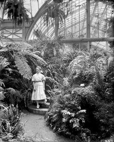 Belle Isle Conservatory, Detroit, Michigan (ca. 1905)