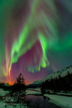 And then, the Aurora Gods went collectively insane. Last night in Portage Valley, Chugach National Forest, Alaska. From Alaska Travel News.com