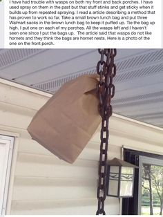 Get Rid of Wasps! We have the old timer hack to make them disappear for good! Puff up a brown paper bag and tie it on the top of your porch. Wasps think they are hornets and will avoid them! This is an old timers trick boy they sure know their stuff! Get Rid Of Wasps, Bees And Wasps, Bug Control, Pest Control, Keep Bees Away, Getting Rid Of Bees, Wasp Repellent, Back Porches, Garden Pests