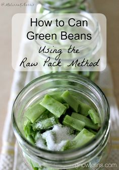 "Gnowfglins | How to Pressure Can Green Beans (Raw Pack Method) | I'm all for saving time in the kitchen! No woman ever said, ""I have way too much time on my hands these days."" But in the interest of saving time, we can't sacrifice food safety. I consider some quick canning methods to be unsafe. Not the raw pack method, though -- it's both safe and time-saving. A win-win! 
