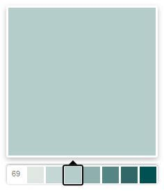 SW Watery will be the color of the ceiling. Inspiration photo seems to be slightly green but am having a hard time finding a similar color.