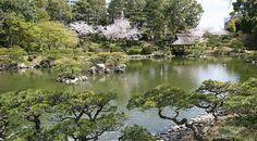 Hiroshima Travel: Shukkeien Garden