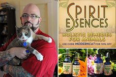 Cats. I love Jackson Galaxy!!