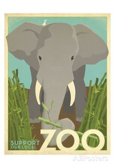 Zoo Elephant Art by Anderson Design Group at AllPosters.com