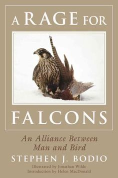 Thus begins the tale by Stephen Bodio, a lover of birds and nature, of the incredible connection between man and birds of prey. Falconry can be traced back over four thousand years and, as Bodio says,