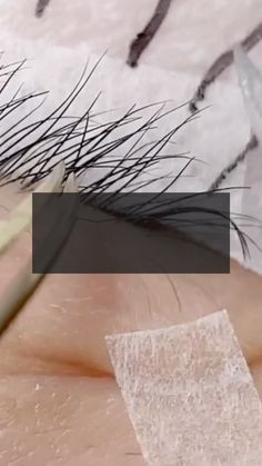 Before starting the main volume set, you will want to double check with a lash mirror the following: 🖤 Are all the spikes going on the same direction? 🖤 Are the distance between spikes even? 🖤 Are they the correct length? Wispy Lashes, Volume Lashes, Spikes, Eyelash Extensions, Eyelashes, Distance, Workshop, Mirror, Learning