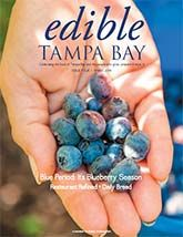 Edible Tampa Bay Spring 2014 -- Articles about area you-pick blueberry farms (hurry, the season is short!), The Refinery restaurant in Tampa's Seminole Heights and 20 Shekels Bread and their sprouted wheat Ezekiel bread.