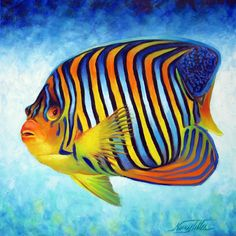 """Royal Angelfish"" by Nancy Tilles: This is an oil painting portrait of the Royal Angel Fish on a painterly blue background. The fish I painted has beautiful blue and yellow/orange stripes. The Royal Angelfish is a shy fish that can . Colorful Fish, Tropical Fish, Beautiful Sea Creatures, Salt Water Fish, Fish Drawings, Angel Fish, Ocean Creatures, Beautiful Fish, Exotic Fish"