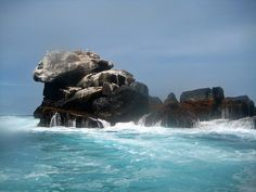 as serene as you can. in the middle of the ocean off of Isabella in the galagpagos with waves crashing all around. Islands In The Pacific, Pacific Ocean, Galapagos Islands Ecuador, Places To Travel, Places To Go, Animal Species, Famous Places, Quites, Archipelago