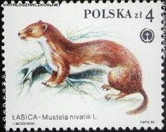 znaczki pocztowe ze zwierzętami