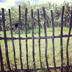 linandara #fence in #Russia ... #summer #garden #trees #grass #countryside #sunny #green