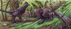 Feathered Dinos