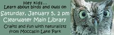 January 5th, 2013 is National Bird Day. Enjoy crafts and fun as Moccasin Lake Park's Roving Naturalist visits to explain the world of birds and owls.