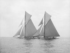 yacht, чб