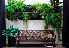 Woolly Pocket Garden Company Combines Plants, Recycling, and Nudity for Fantastic Botanical Design Living Wall Planter, Wall Planters, Living Haus, Pocket Garden, Plant Projects, Wood Projects, Small Space Gardening, Garden Inspiration, Garden Ideas