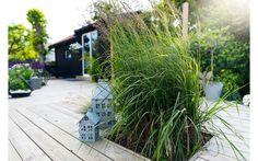 Den stora altanen binder ihop huset och friggeboden och ger gårdskänsla. Sommartid har säljaren Finn sitt kontor i uthuset, vintertid används det för växtförvaring av det som planterats i kruka, som fikon- och olivträd.