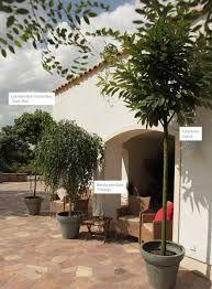 bildergebnis fr bepflanzung terrasse gastro - Moderne Dachterrasse Unterhaltungsmoglichkeiten