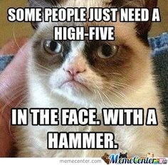 Never Mess With Grumpy Cat... Never Ever by jacky780001 - Meme Center