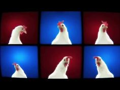 Techno Chicken Song Remix (1 Hour) - YouTube