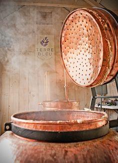 Lavender Steam Bath ;)