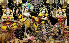To view Radha Gopinath Wallpaper of Chowpatty in difference sizes visit - http://harekrishnawallpapers.com/sri-sri-radha-gopinath-lalita-vishakha-iskcon-chowpatty-wallpaper-071/