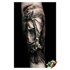 Gorgeous  #horse #tattoo by Cido. One of the best horse tattoos that I've ever seen. Most tattoo artist can't draw a realistic horse.