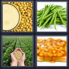 4 fotos 1 palabra garbanzos - Pulsa sobre la foto para ver la solución