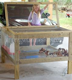 Building A DIY Chicken Coop If you've never had a flock of chickens and are considering it, then you might actually enjoy the process. It can be a lot of fun to raise chickens but good planning ahead of building your chicken coop w Building A Chicken Coop, Diy Chicken Coop, Keeping Chickens, Raising Chickens, Backyard Farming, Chickens Backyard, Brooder Box, Chicken Pen, Baby Chickens