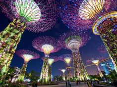 """2014 ranking: No. 4Even though its projected visitor numbers increased slightly, Singapore's ranking dropped from 2014—Istanbul's rise is to blame there. But even though it's a small country (its nickname is the """"little red dot""""), Singapore's wide range of cultural offerings makes it a popular place to visit. English is one of the country's four official languages, so Western visitor numbers are on the rise."""