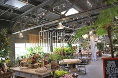 terrain garden centre - Google Search