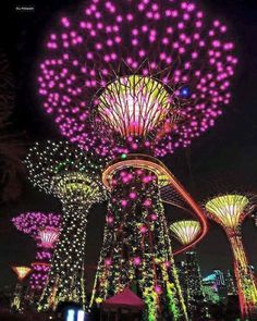 The Solar Powered Supertrees Garden by the Bay, Singapore by Clove Photography Beautiful Places To Travel, Beautiful World, Nature Photography, Travel Photography, Singapore Travel, Wanderlust Singapore, Singapore Singapore, Gardens By The Bay, Thinking Day