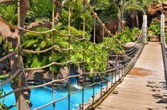 I've been across this bridge! Hyatt Regency Maui Resort and Spa