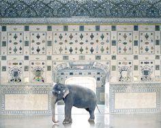 Photographer Karen Knorr Brings Indian Myths to Life   Yatzer