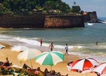 India holiday packages best deals  ARV Holidays- Book India holiday packages and bag in best deals on your booking at arvholidays.com. Explore the Indian wildlife, culture and splendor.