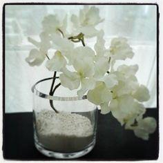 Orquídeas, cristal y piedras...