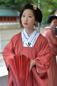 geisha-kai:  Miyabi-kai 2015: maiko Mamekiku of Gion Kobu by tora003 - blog