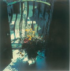 Works « Mirror and Pomegranate » from the private archives of Andrey Tarkovsky