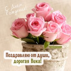 розы в горшке Happy Birthday Good Wishes, Kids Learning Activities, Friend Birthday, Gatsby, Congratulations, Rose, Creative, Holiday, Flowers