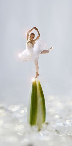 Fairy Dancer Minna Somero on a sprout of Galanthus Nivalis. Disney Characters, Fictional Characters, Dancer, Fairy, Disney Princess, Photography, Photograph, Photography Business, Photoshoot