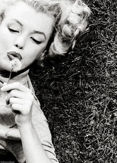 Marylin Monroe...wow great photo. I have never seen this picture, and its my new fav Marilyn pic! -NS