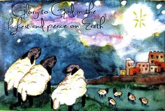 Woolly Sheep on a hill gazing  Wondering What this by EmmysAnimals