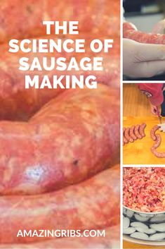 How Do You Make Sausage? Everything you need to know to make your very own sausage at home. Ham Sausage Recipe, Summer Sausage Recipes, Smoked Ham Recipe, Smoked Sausage Recipes, Homemade Sausage Recipes, Bratwurst Sausage, Bratwurst Recipes, Braai Recipes, Pork Recipes