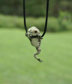 Tiny Frog Necklace  needle felted by motleymutton on Etsy