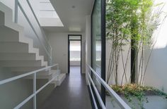 A House in Trees / Nguyen Khac Phuoc Architects  | ArchDaily